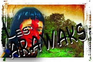 amerindiens des caraibes